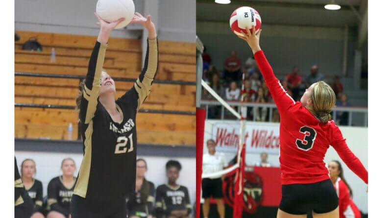 Walnut and Falkner in volleyball playoffs
